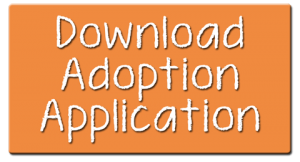 Download Adoption App Icon