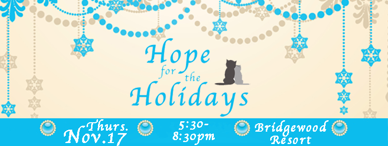 Hope for Holidays event FB header